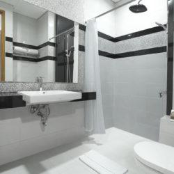 double_toilet_2
